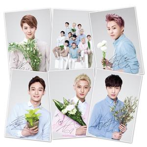 EXO 엽서 M 세트